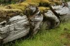 Canada: Coast to Coast – The Haida Gwaii